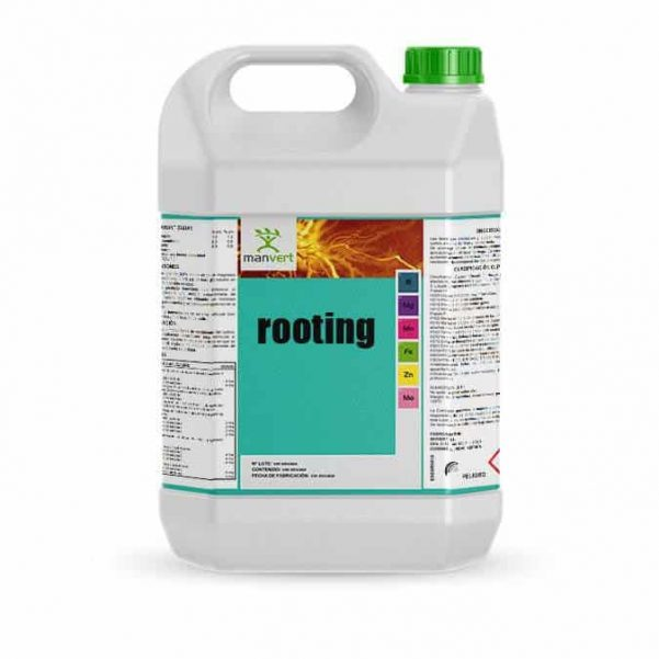 rooting_5l_web (1) (3)